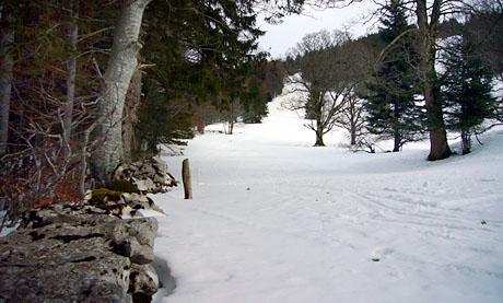 Jura-Skifeeling