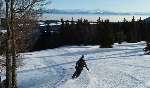 Dent de Vaulion, 18. Januar 2012 (Foto: db.)