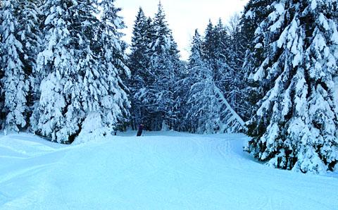 Rüschegg-Eywald, 17. Februar 2012 - klicken für mehr Fotos