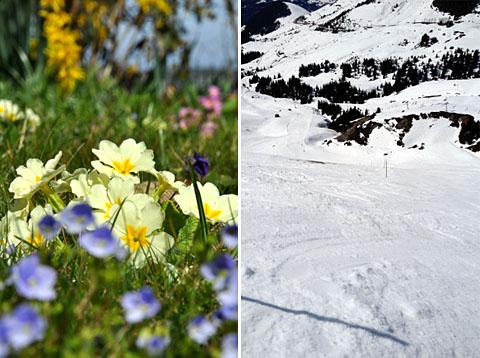 Garten in Bern vs. Piste Oh God in Wengen - beides anmächelig