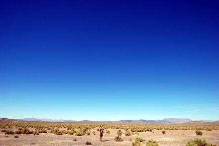 Der Blöker in den unendlichen Hochebenen Nevadas (September 2008)
