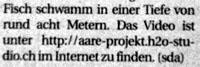 Unpraktischer URL im BUND (Oktober 2008)