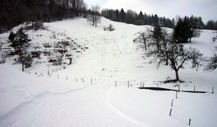 Eine Kamikaze-Piste an der Hohen Winde im Jura (Februar 2009)