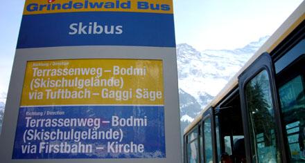 Gaggi Säge (Grindelwald, März 2009)