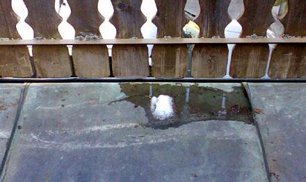 Der letzte Schneerest von 143cm (13. April 2009)