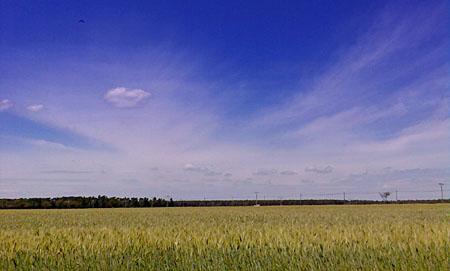 Unterwegs in LDS: Landkreis Dahme-Spreewald, Juni 2009