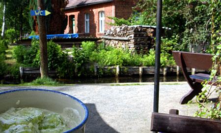 Gurken à gogo: Lehde im Spreewald, Juni 2009