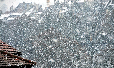 Dicke Schneeflocken in Bern, 5. Februar 2010, 13.10 Uhr