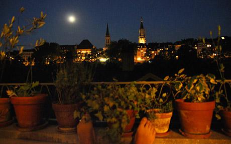Endlich Sommer in Bern (25.6.2010)