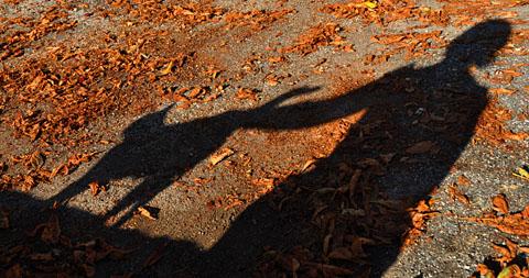 Büsi in Comps-sur-Artuby, Ende Oktober 2010