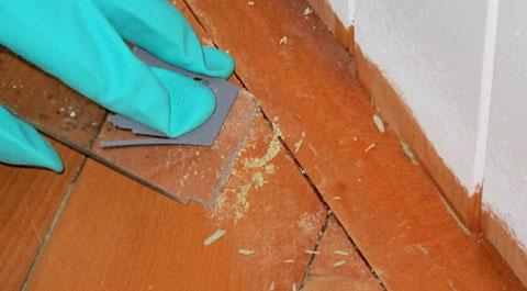 Teppichkleber von Parkettboden entfernen mit Lösungsmittel und Schaber