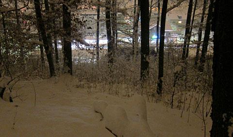 Nacht-Winterspaziergang im Berner Steinhölzli, 1. Dezember 2010