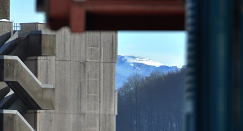 Schneefeld hinter dem Zieglerspital: Doch welches bloss?