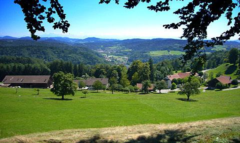 Gyrenbad, Juli 2011