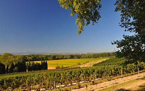 Carcassonne, 9. September 2011