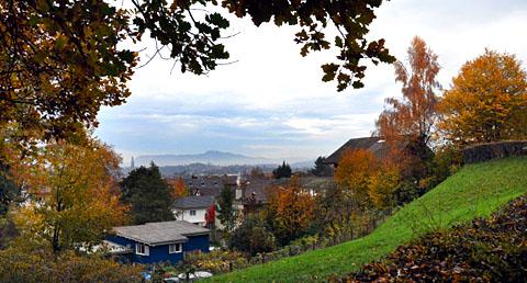 Steinhölzli, Anfang November 2011