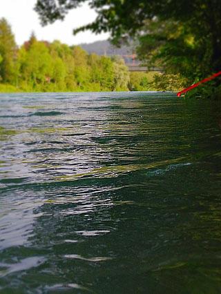 Hoher Wasserstand und starker Zug - die Aare beim Amrzilibad, 29.6.2012