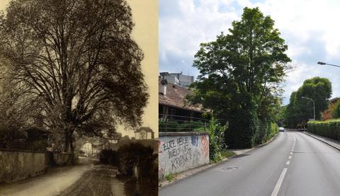 Vergleichsfoto Bern ca. 1925-2012, Morillonstrasse/Bahnübergang (Klicken zum Vergrössern)