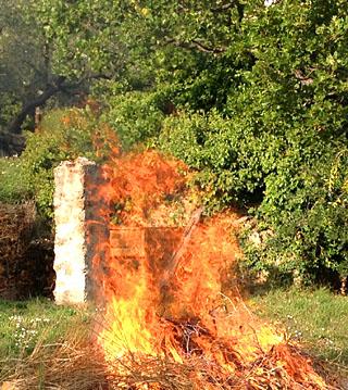 Mottfeuer - gehört im Süden irgendwie einfach dazu