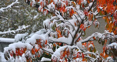 Früher Wintereinbruch in Bern, 28. Oktober 2012