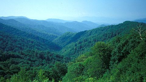 Wandern in den Appalachen, Blue Ridge Mountains, Juni 1993